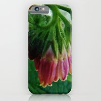 iPhone & iPod Case featuring Comfrey by Chaos Gate Designs