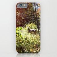autumn deer. iPhone 6 Slim Case