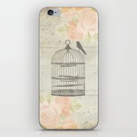Rustic Birdcage iPhone & iPod Skin