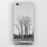 The Un-Winter iPhone & iPod Skin