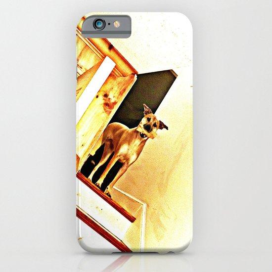 Vertigo Dog iPhone & iPod Case