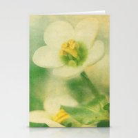 Simply Nice Stationery Cards