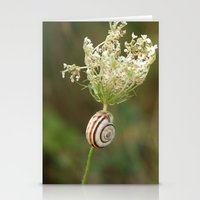 Summersnail Stationery Cards