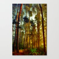 Morning In The Woods - P… Canvas Print