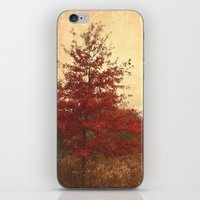 Red Oak iPhone & iPod Skin