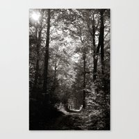 forrest II. Canvas Print