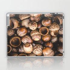 Squirrel Harvest Laptop & iPad Skin