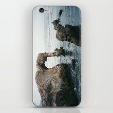 Pirate's Cove iPhone & iPod Skin