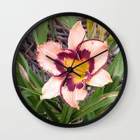 Pink Daylily Growing In … Wall Clock