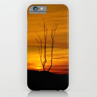 iPhone & iPod Case featuring Lone tree sunset by Derek Moffat