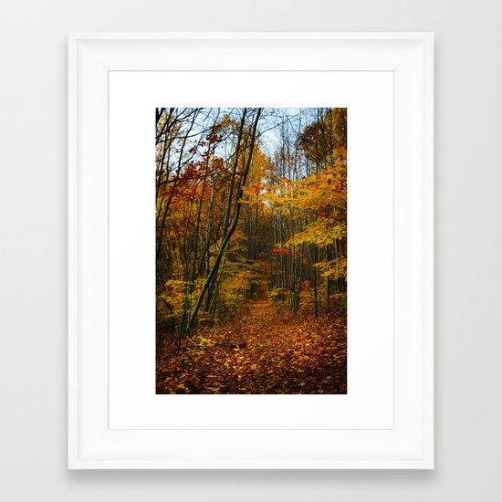 Foliage. Framed Art Print