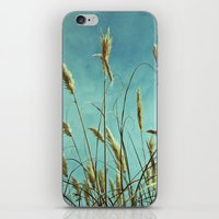 Aesthetic grass iPhone & iPod Skin