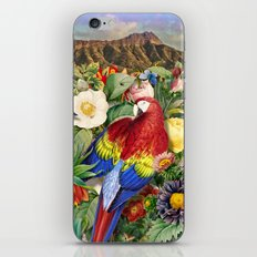 Red Parrot iPhone & iPod Skin