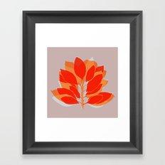 Blossom Spice Framed Art Print