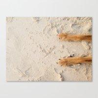 Beach Paws Canvas Print