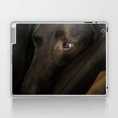 My Friend Chocolate Lab Laptop & iPad Skin