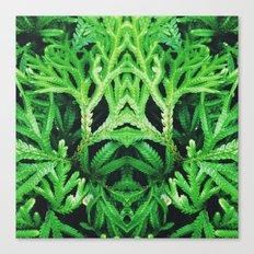 50 Shades of Green (4) Canvas Print