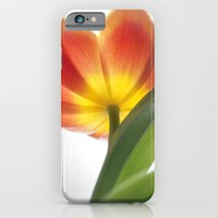 Bright Spring Tulip iPhone 6 Slim Case