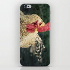 gallo iPhone & iPod Skin