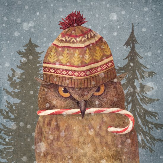 Christmas Owl  Canvas Print