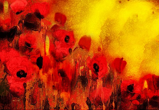 FLOWERS - Poppy reverie Art Print