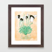 Plant with No Flowers Framed Art Print