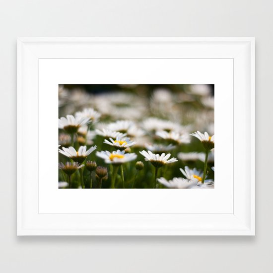 Daisy Field Framed Art Print