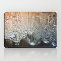 Crystal Clear.... iPad Case