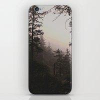 Oregon Coastal Forest iPhone & iPod Skin