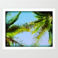 Palm Trees Tropical Photography Art Print