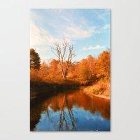 Boone Fork Creek Canvas Print