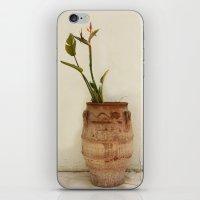 Bird Of Paradise Plant iPhone & iPod Skin