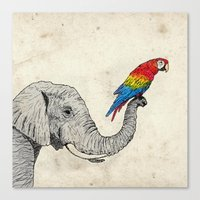 Elephant and Scarlet Macaw Canvas Print