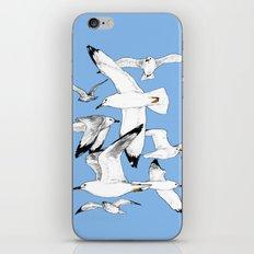 Flying around iPhone & iPod Skin