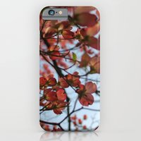 Pink Dogwood iPhone 6 Slim Case