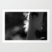 Birtch Light in Black and White Art Print
