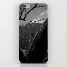 Split Tree iPhone & iPod Skin