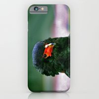 Bateleaur Eagle iPhone 6 Slim Case