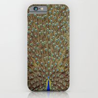 iPhone & iPod Case featuring Bird of Paradise by interopia