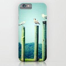 3 sea guls iPhone 6 Slim Case