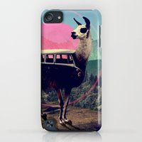 iPod Touch Cases featuring Llama by Ali GULEC