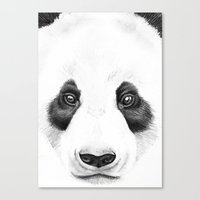 Panda Face Canvas Print