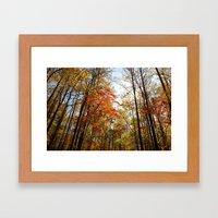 Fall's Wanderlust  Framed Art Print