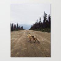 Road Fox Canvas Print