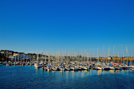 The Boats of Howth Harbor Canvas Print