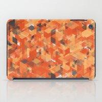 Chameleonic Panelscape  … iPad Case