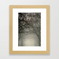 Branches Meeting In The … Framed Art Print