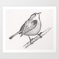 Wren on a Branch Art Print