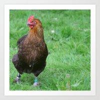Handsome Chicken Art Print