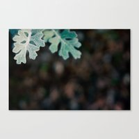 Greens and Browns Canvas Print